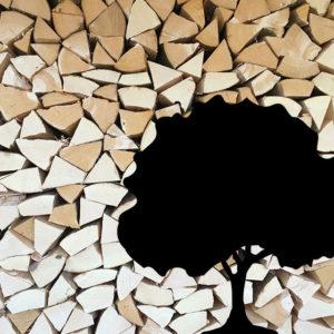 Brennholz Asten Buche