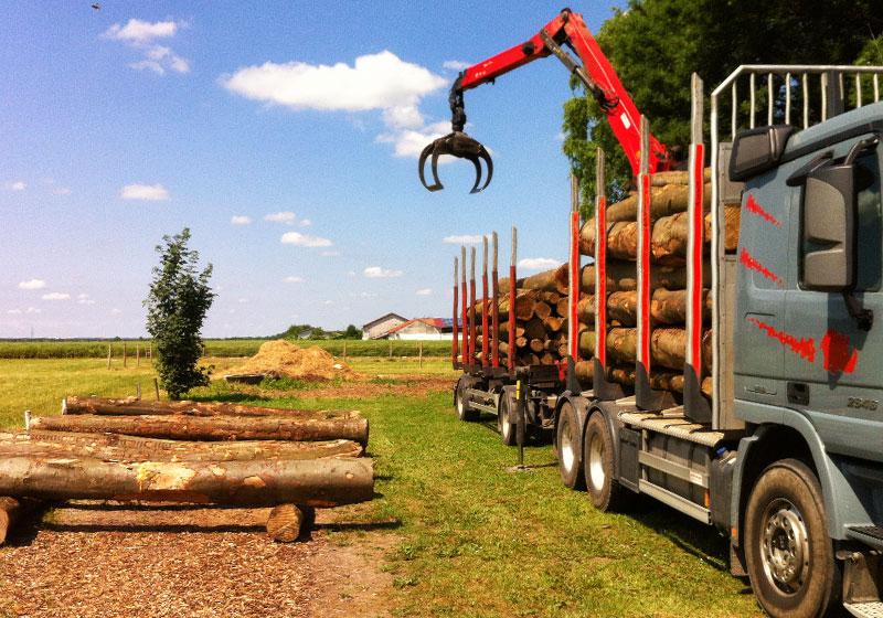 Brennholzhandel Asten Brennholz Lagerung